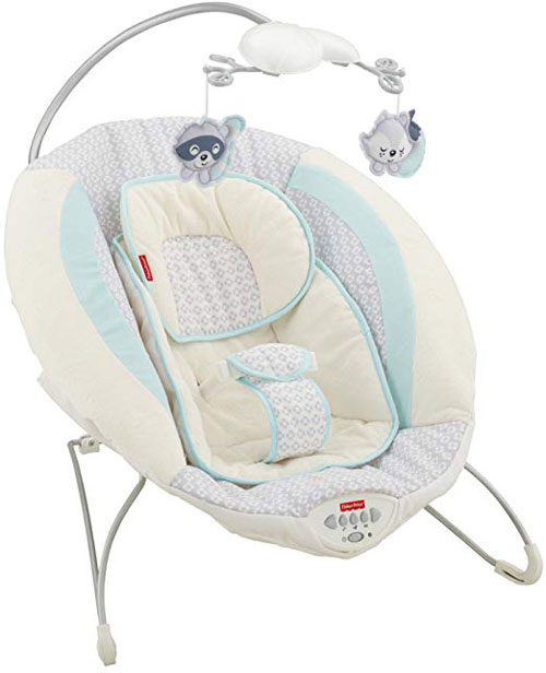 Fisher Price Moonlight Meadow Deluxe Bouncer