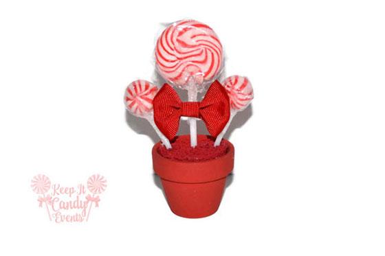 Red Mini Lollipop Arrangement Bat Mitzvah Favor