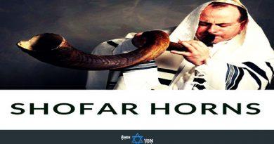 Best Jewish Shofar Horns