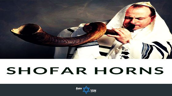 Small-Large Kudu SHOFAR Hebrew Trumpet Blow Horn Jewish Kosher Holy Land Israel