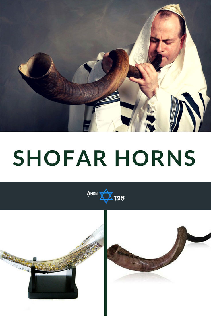 Best Jewish Shofar Horns 2 Large