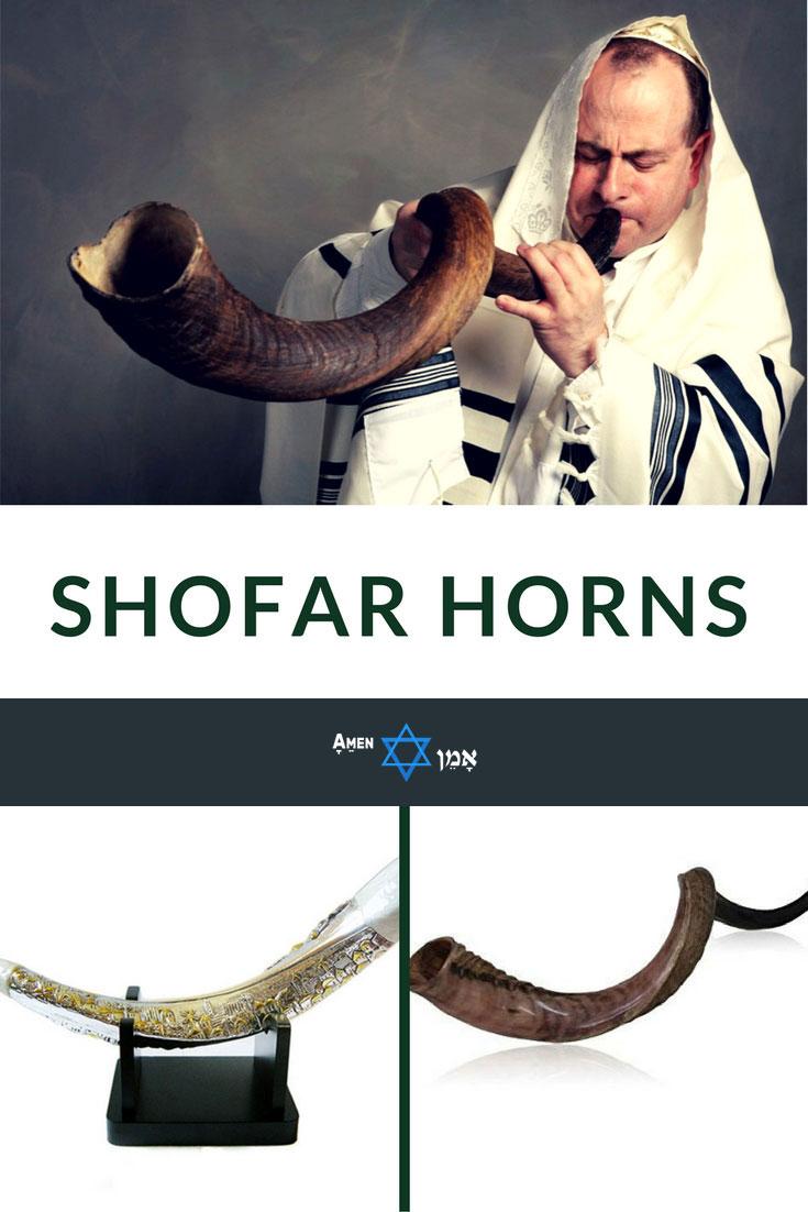 Best Jewish Shofar Horns 2 Large