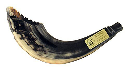 Moroccan Rams Horn Shofar Crown Cut