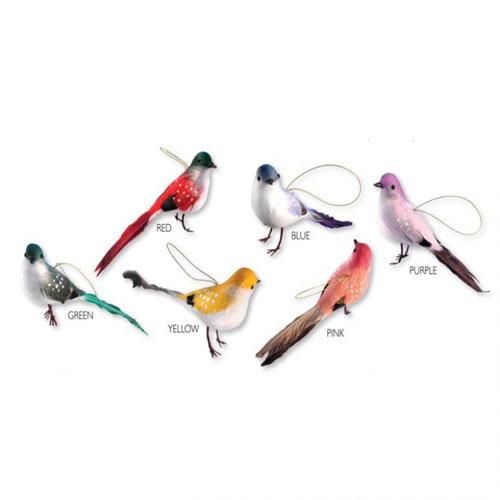 Assorted Bird Sukkah Decorations