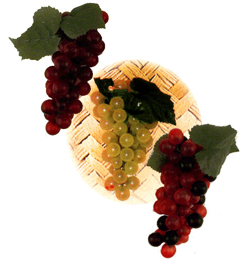 Assorted Grape Clusters Sukkah Decorations