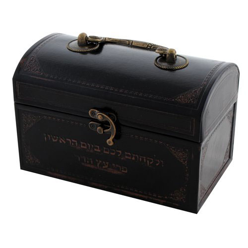 Faux Leather Etrog Box