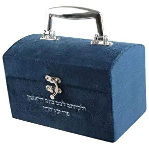 Modern Velvet Esrog Box With Embroidery