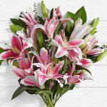 Deluxe Fragrant Stargazer Lilies