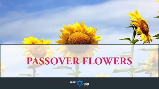 Passover Flowers