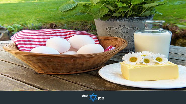 Dairy Cheese Eggs