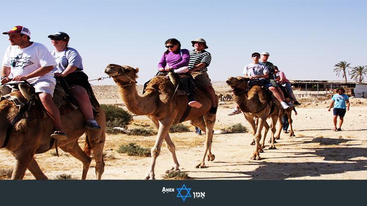 Camel Ride Israel