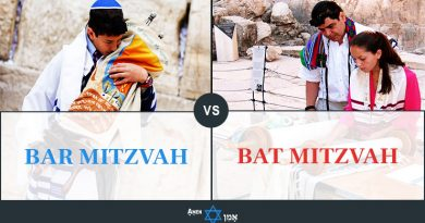 Bar Mitzvah Vs Bat Mitzvah 2