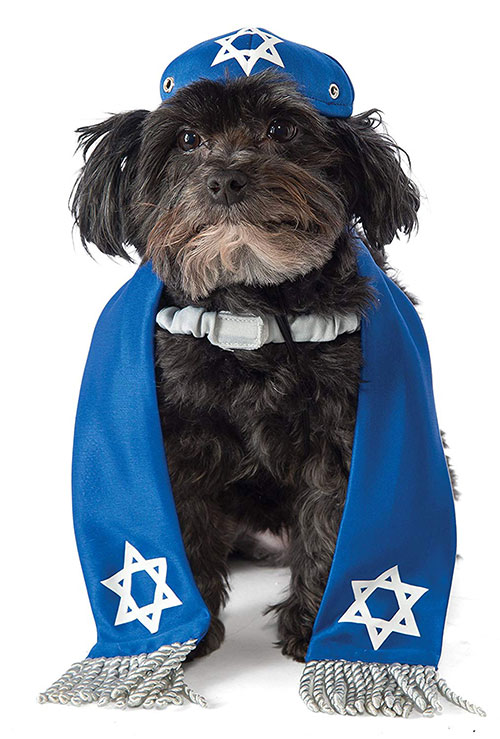 Hanukkah Pet Costume